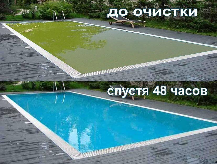 У меня зеленый бассейн, что посоветуете?